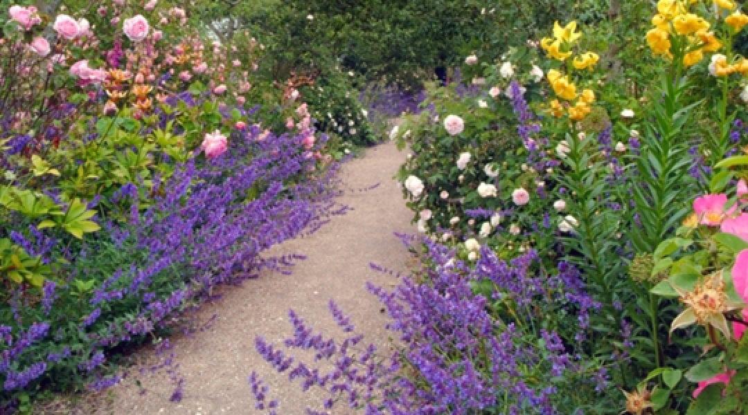 St Andrews Botanic Gardens and Cambo Gardens visit