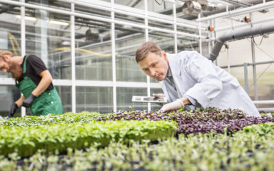 The Chartered Institute of Horticulture launches new website