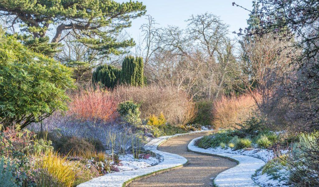 Visit to Cambridge University Botanic Garden