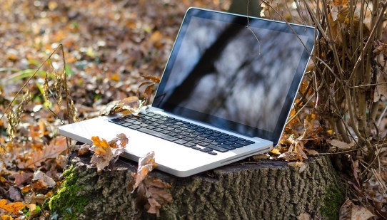 laptop on a tree stump