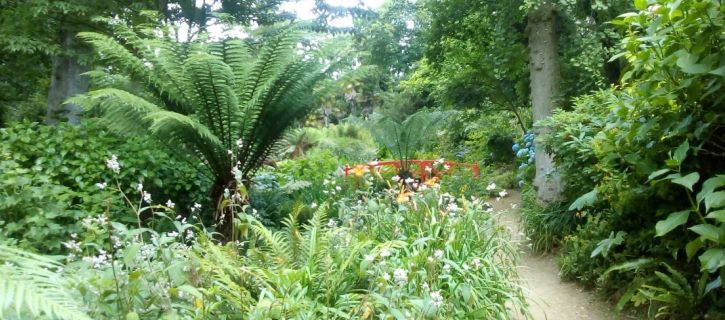 Venue - Abbotsbury Sub Tropic Gardens