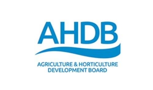 Logo AHDB