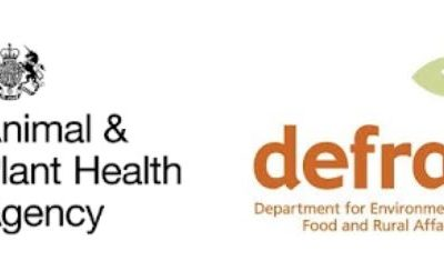 Defra Imports & Exports – newsletter update & transition period